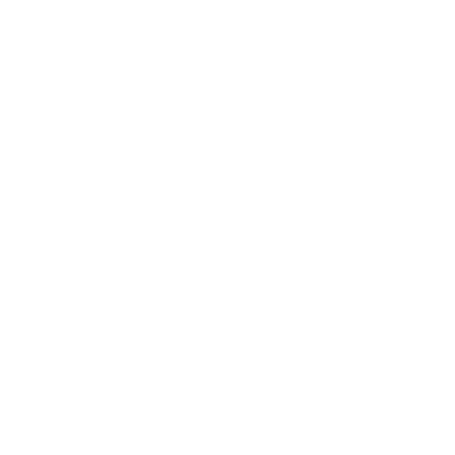 Point4More Logo